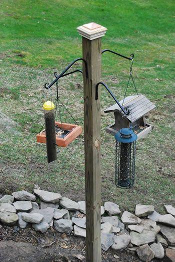 Install A Post For Feeding The Birds Bird Feeding Station Hanging Bird Feeders Bird Feeders