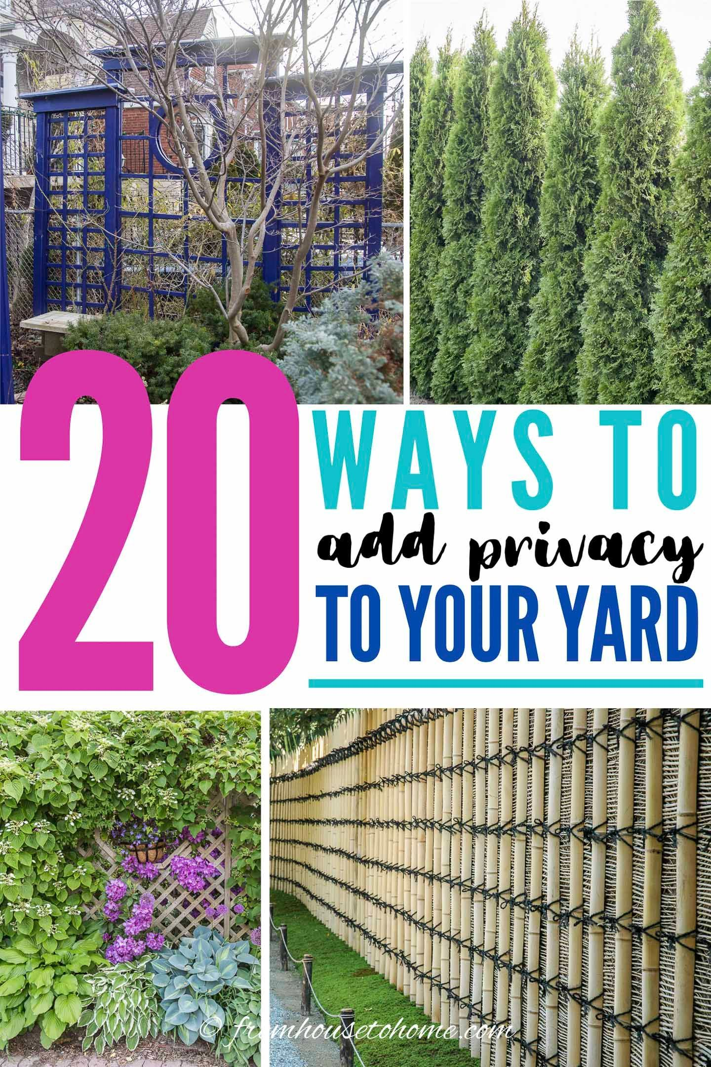 20 Backyard Privacy Ideas For Screening Neighbors Out In 2020