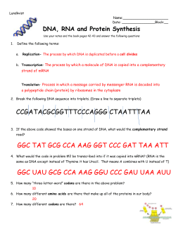 Answer Key Worksheet On Dna Rna And Protein Synthesis ...
