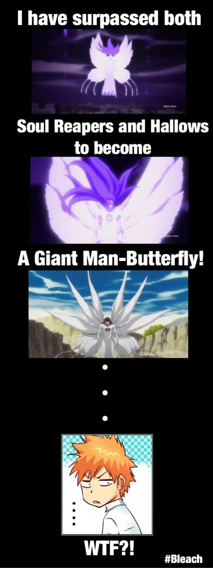 That is totally true. Aizen now has a very scary form, a ...