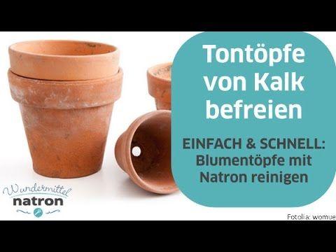 Blumentopf Reinigen Tontopfe Mit Natron Von Kalk Befreien Youtube Blumentopf Blumentopfe Aus Ton Reinigen