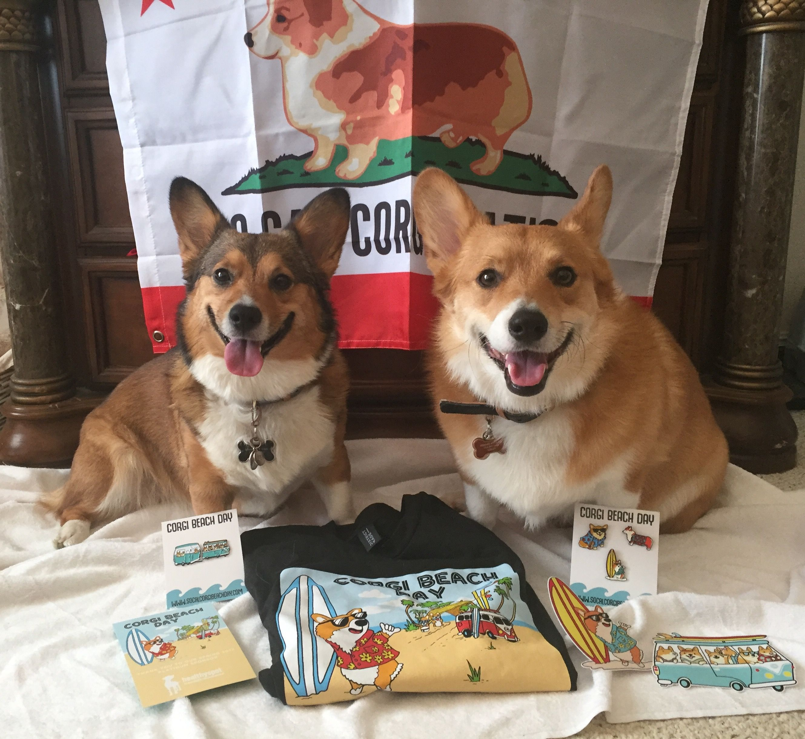Socal Corgi Beach Day Beignet Tucker Corgi Beach Day Decor