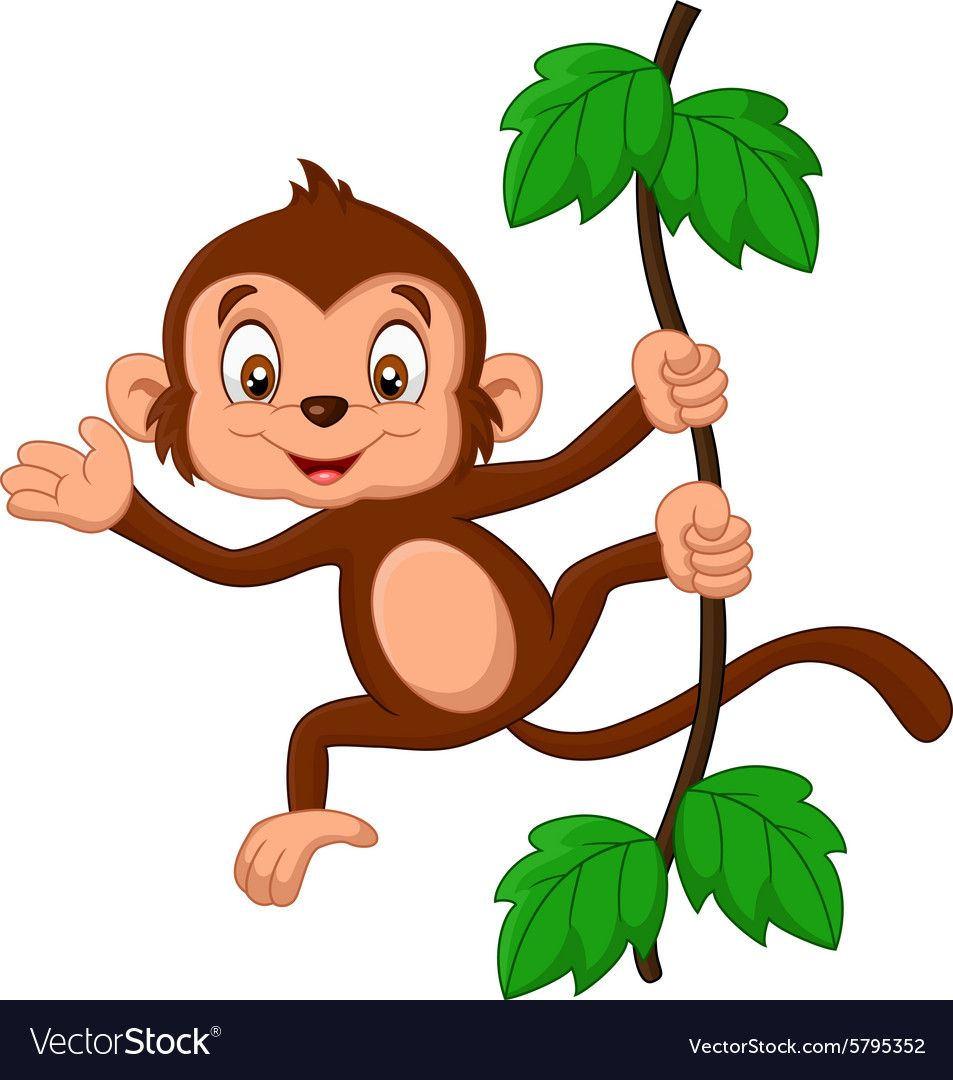 monkey pictures cartoon cartoon monkey hanging in tree vector image on jungle 3739