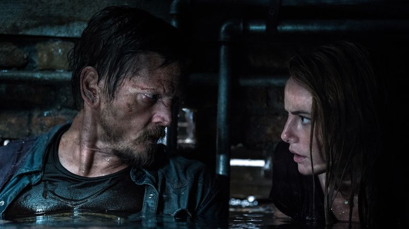 Crawl Movie Review 123movies Movies The Hills Have Eyes Horror Films