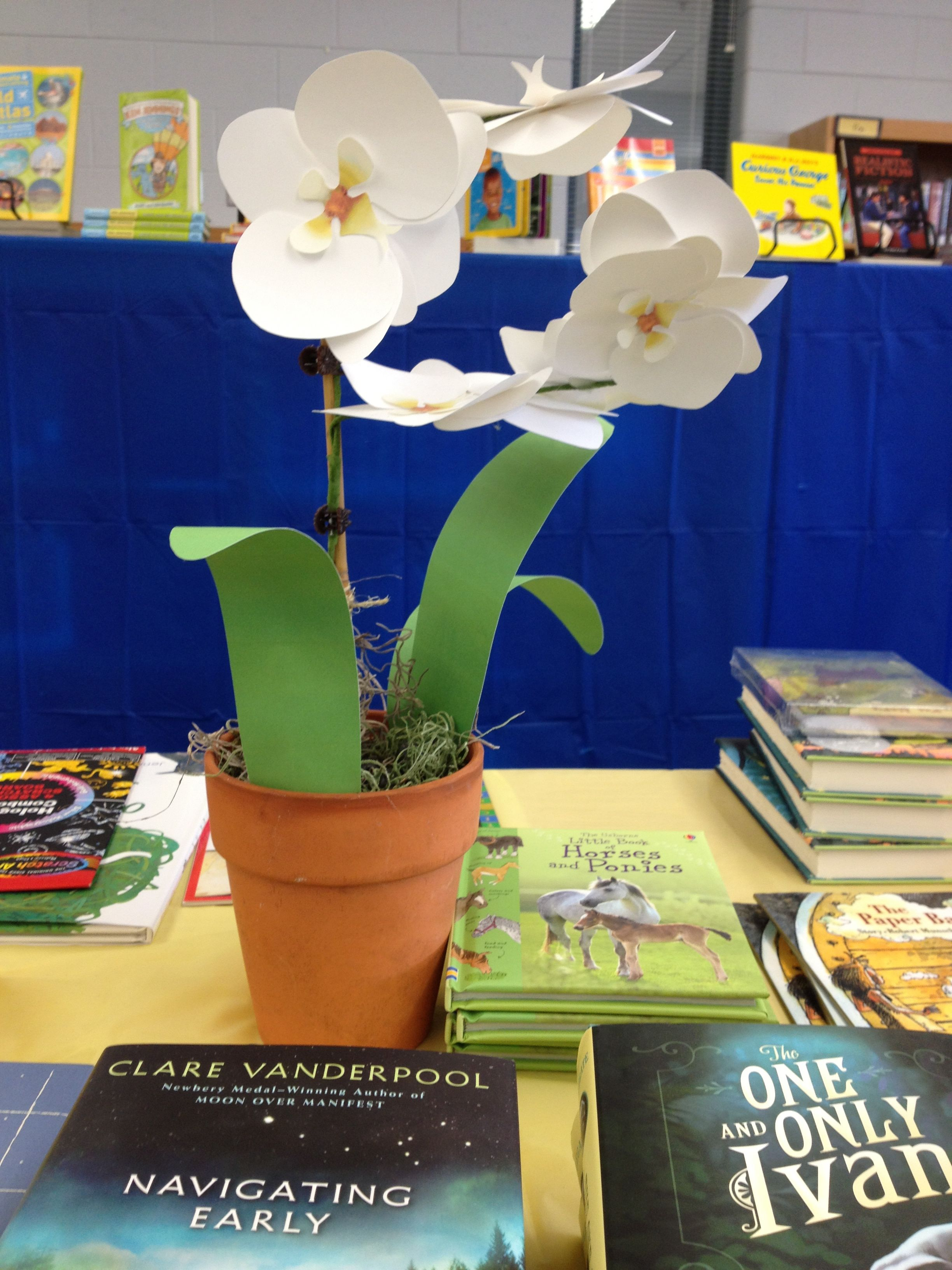 Flower orchid at the 2014 Book Fair