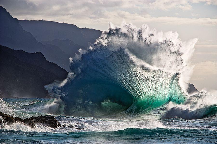 Fan Wave