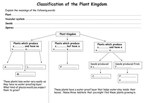 plant classification fruit plant classification plants revision guides. Black Bedroom Furniture Sets. Home Design Ideas