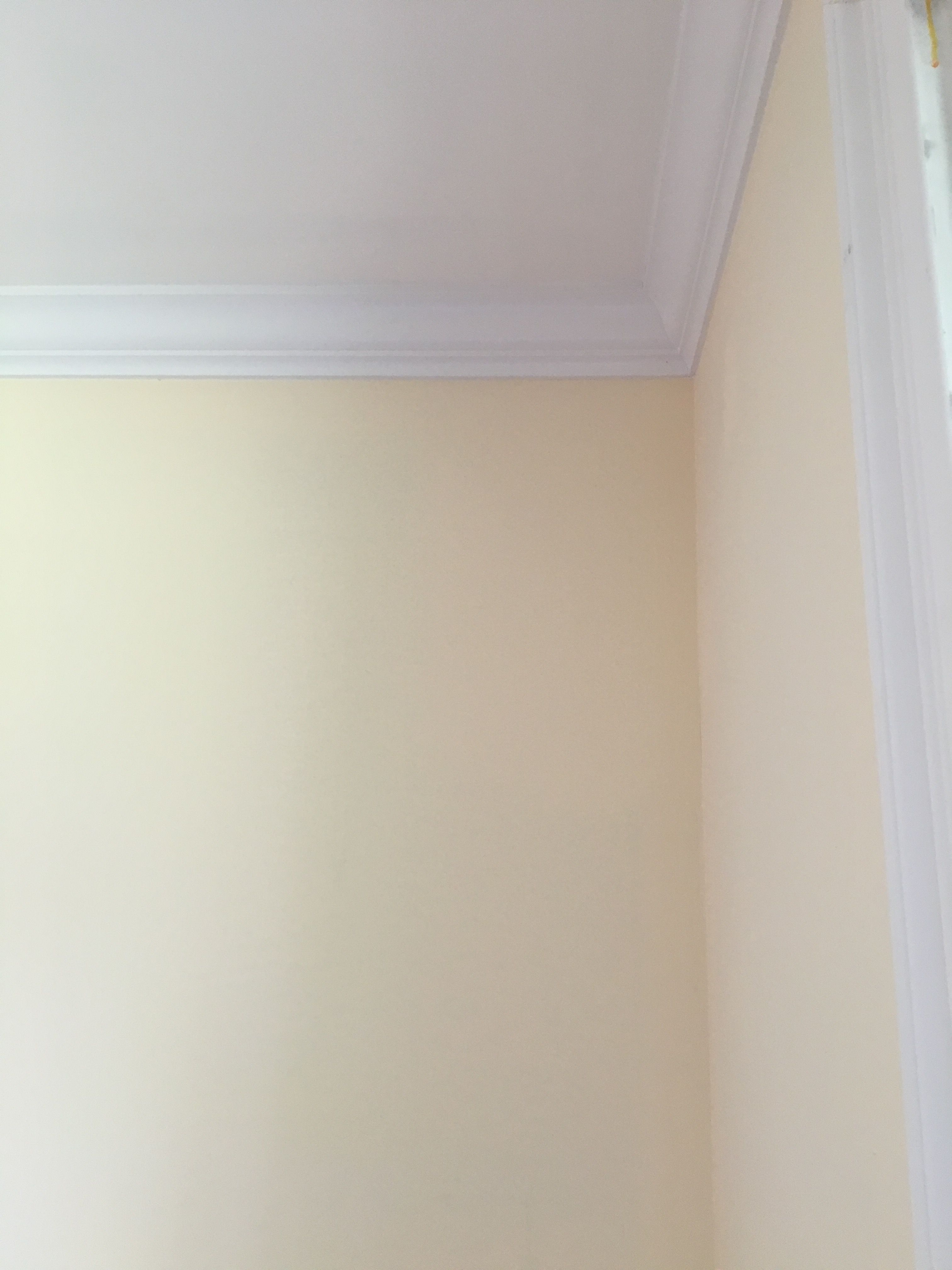 Paint Colours Colors New Crown Moulding And Benjamin Moore Kansas