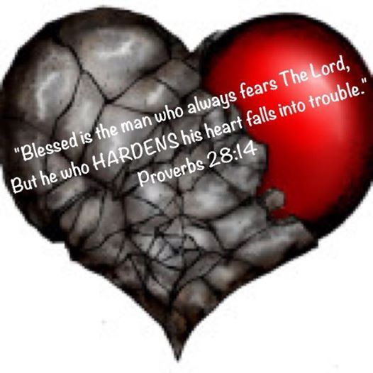 Be wise, do not harden your heart like Pharaoh (Exodus 9:34-35) but fear The Lord (Proverbs 1:7; 9:10)