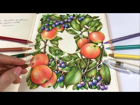 Crabapples Part 2 Apple Berries Coloring The Flower Year Coloring Book Youtube Colored Pencils Drawing Apple Coloring Books