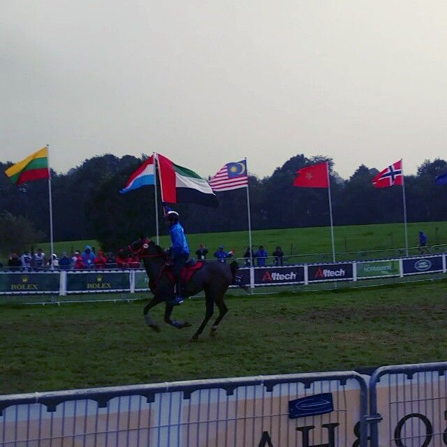 VIDEO 8/28/14 Normandy, France. Alltech FEI World Equestrian Games (WEG) (160km)___Photo:salsabrii