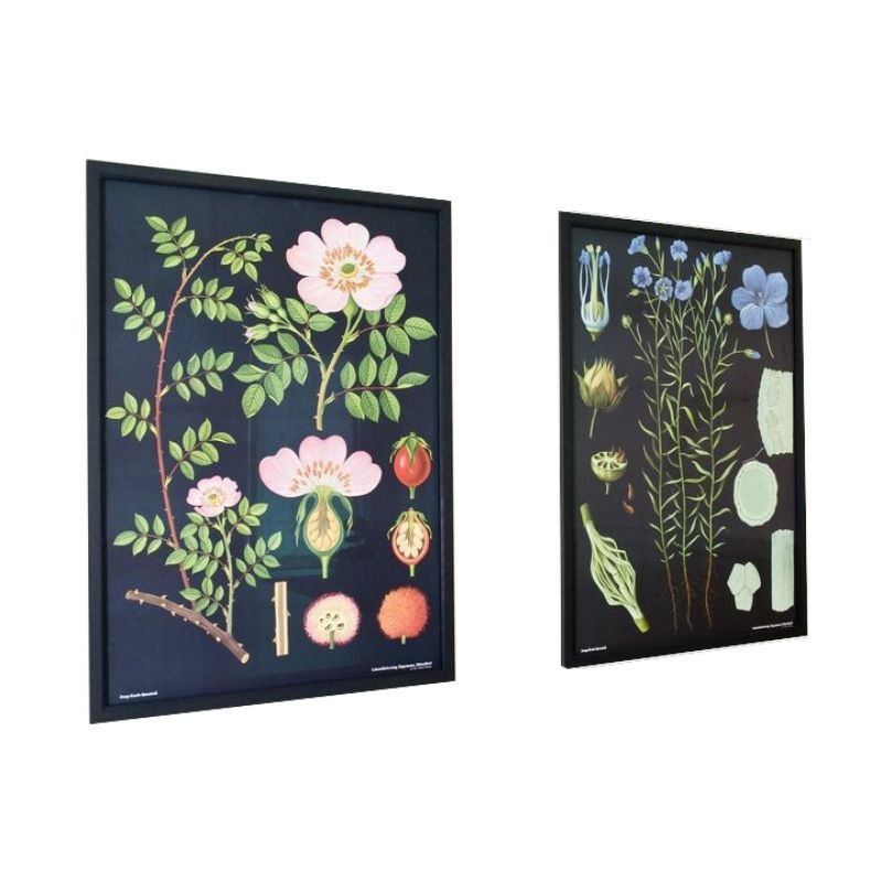 Botanical prints for over your bed @Zoe Gottlich | Large Framed Botanical Prints in Rose and Flax by Chairish | Chairish