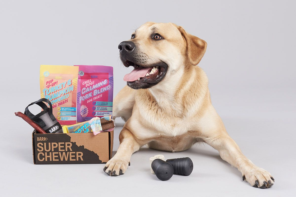 Tough Fun Delivered Super Chewer Is A Monthly Box Of Tough Toys