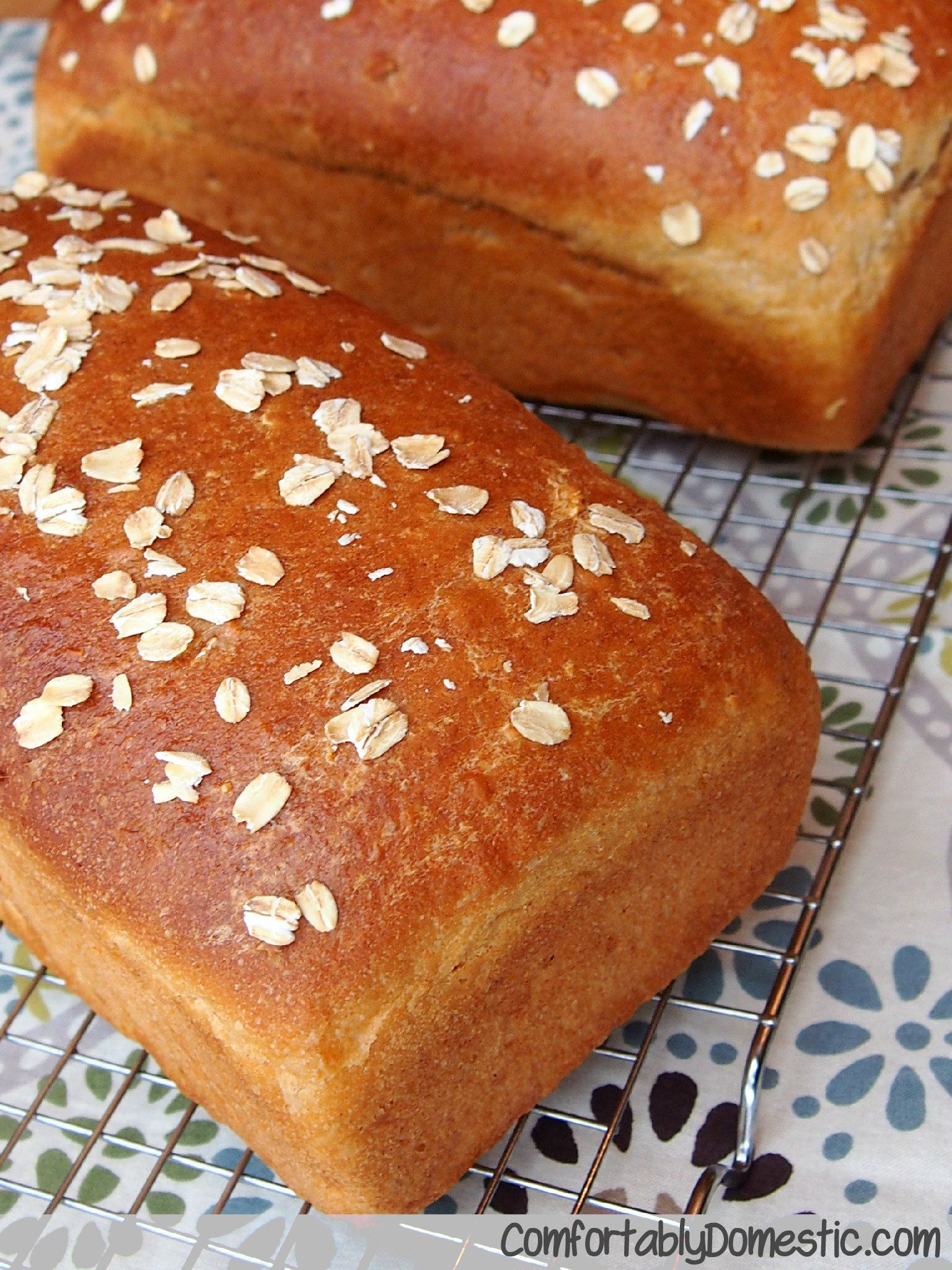 {All the Comforts of Home} Honey Oatmeal Bread   Best ...