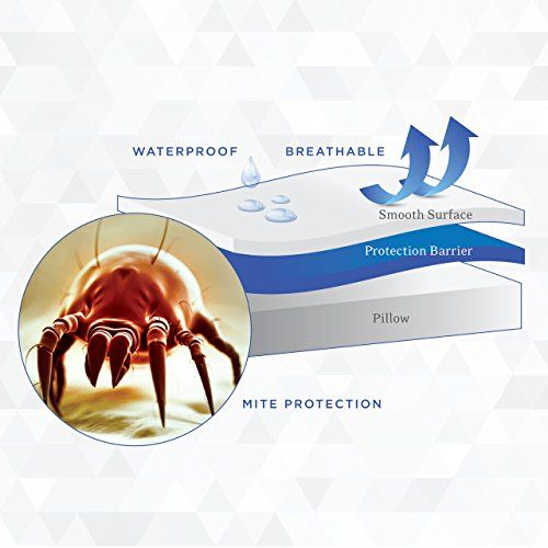 Sky Bedding Mattress Protector Best Dust Mite Mattress Cover