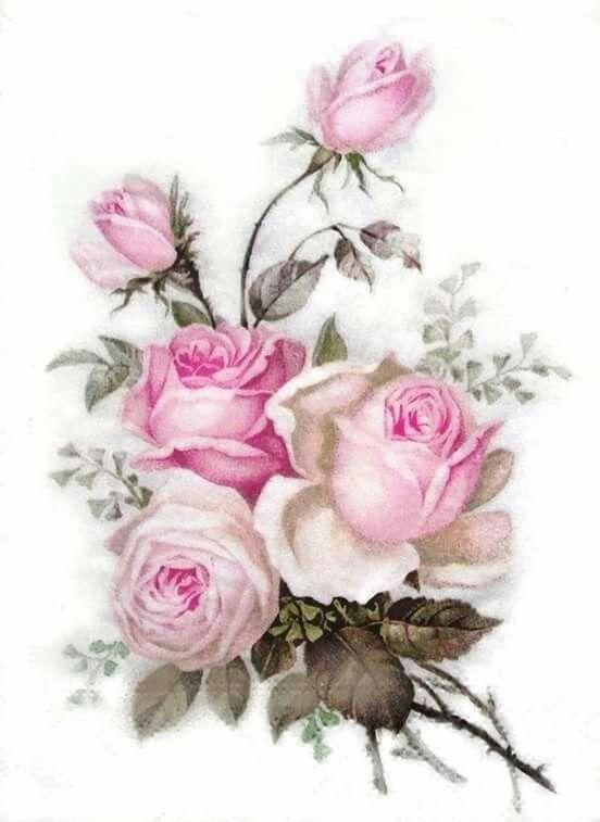 Pin De Esand Diaz En Rosas Laminas Vintage Para Imprimir Decoupage Flores Pintadas