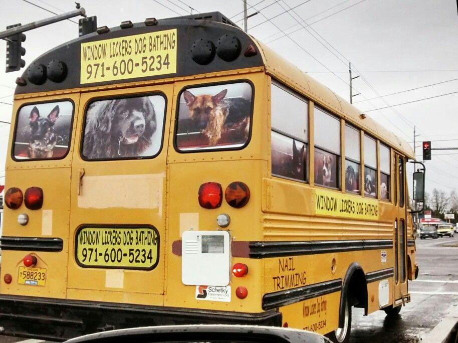 Dog Grooming Van London