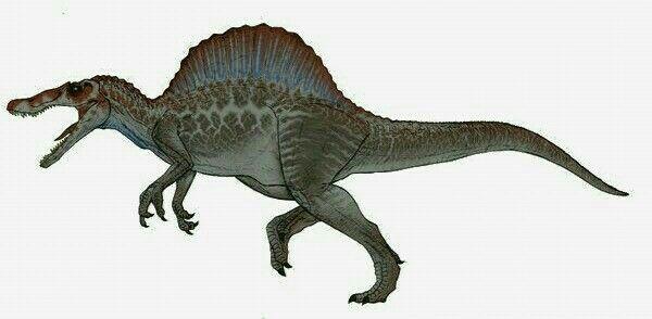 Spinosaurus jurassic park dinosaurs jurassic park jurassic world dinosaurs jurassic park world - Spinosaurus jurassic park ...