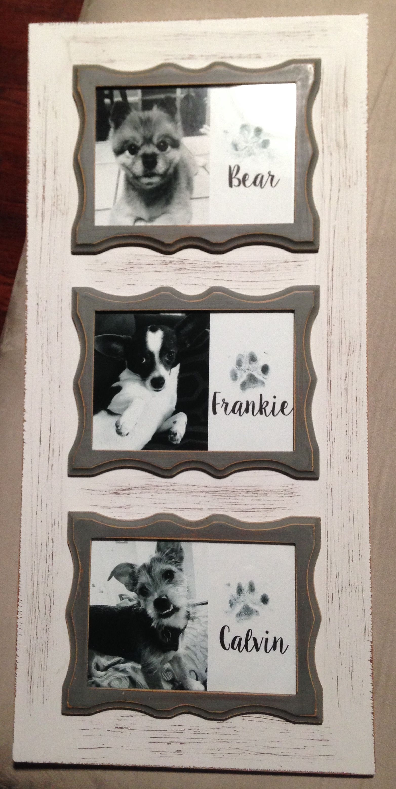 Framed Paw Print Art Frame Is From Hobby Lobby And I Used Kid