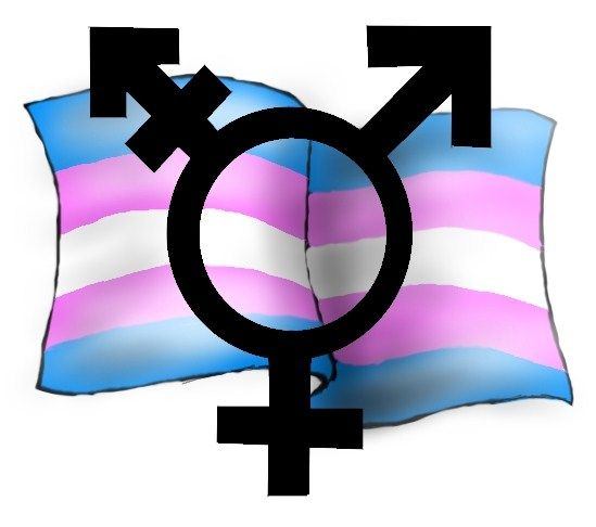blog gay beur