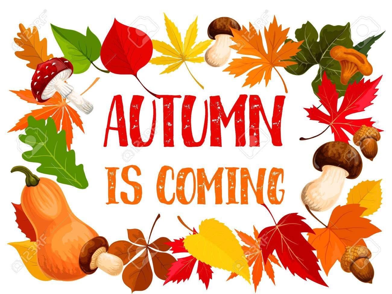 Autumn frame of fall leaf, pumpkin and mushroom , AFF,