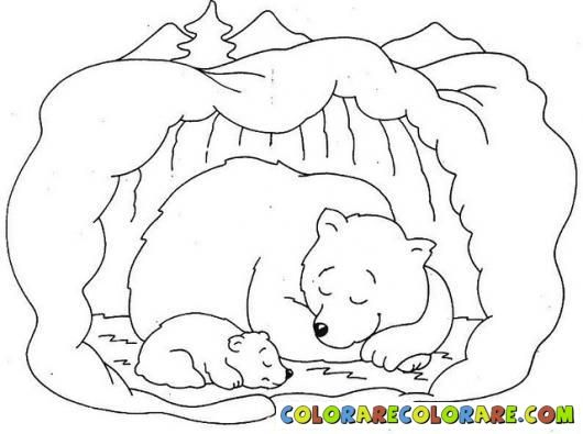 Hibernation Bear Colouring Pages Bear Coloring Pages Animal Coloring Pages Hibernating Bear Craft