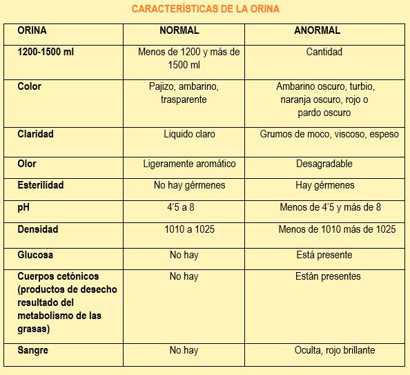 características de la diabetes en orina