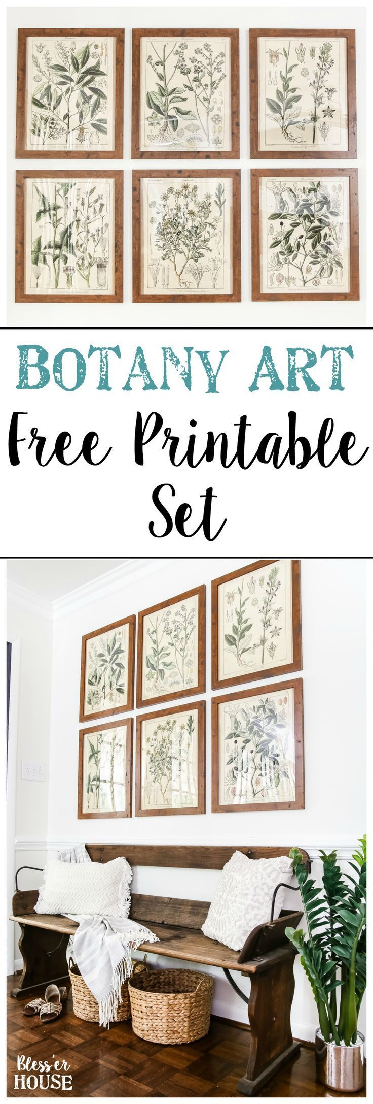 Botany Printable Art and a Wall Decor Hanging Trick | blesserhouse.com - A free download of botany printable art perfect for spring and summer, plus a wall decor hanging hack to make hanging frames quick and easy. #freeprintable #farmhouseprintable #springdecor #walldecor
