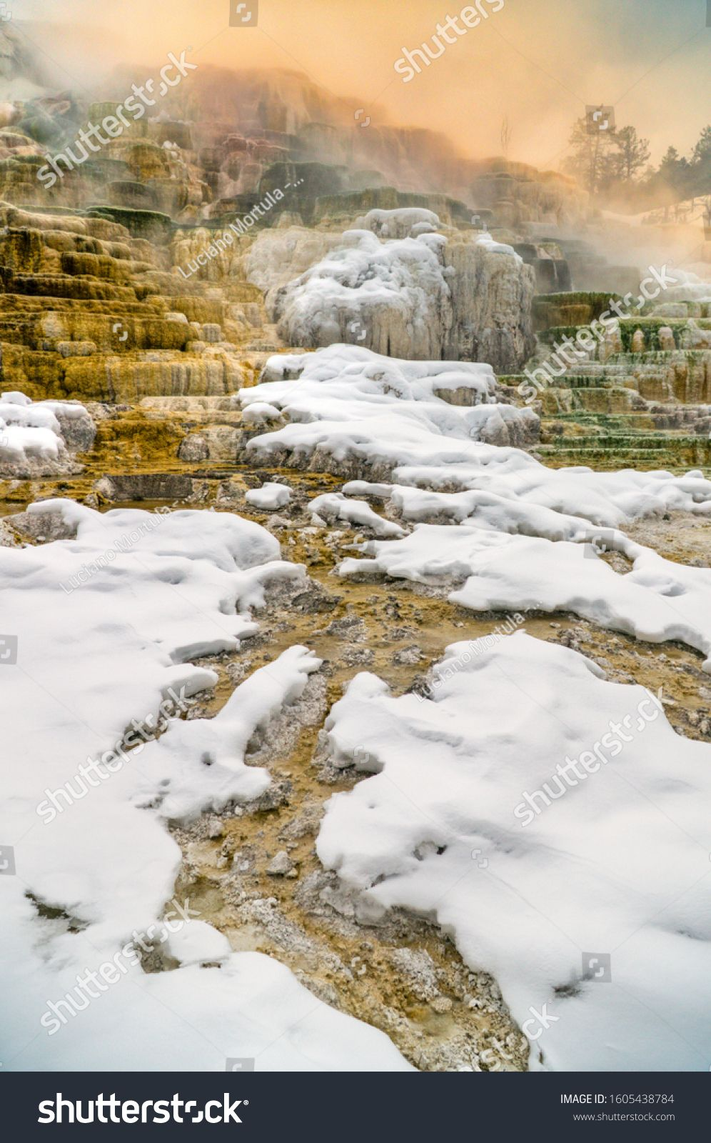 View of Canary Springs and terraces of Mammoth Hot Springs area during winter, Yellowstone National Park, USA. #Sponsored , #ad, #terraces#Mammoth#Hot#View