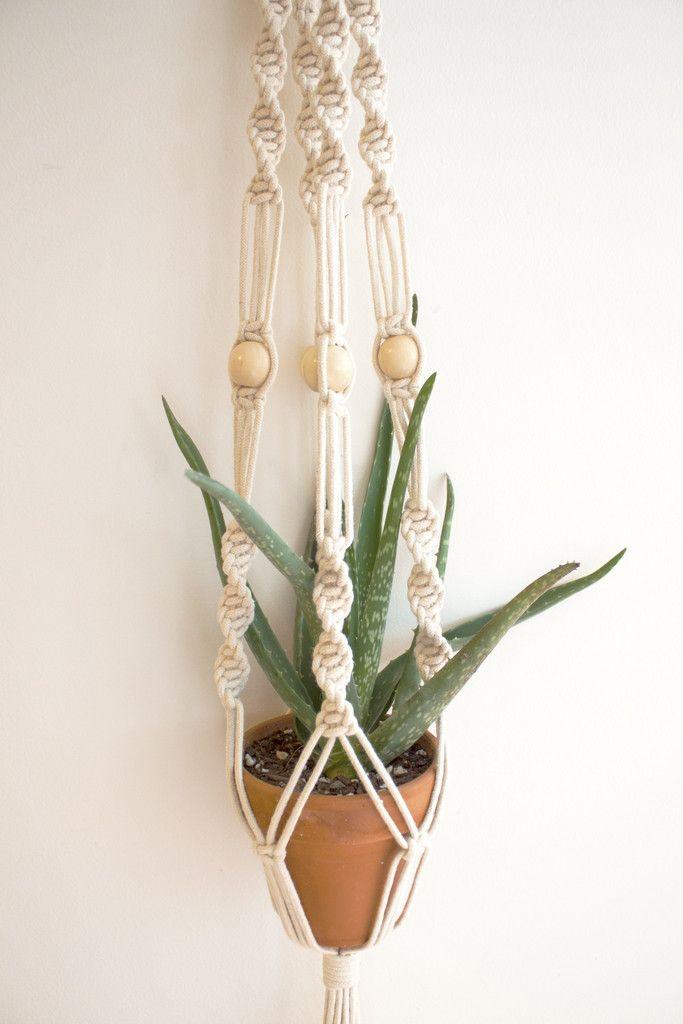 Macrame Plant Hanger. Great for holding some Aloe Vera ... - photo#14