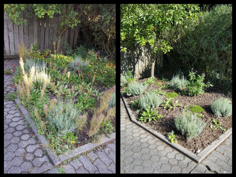 Gartenpflege  Das Wetter mag wechselhaft sein, die Gartenpflege muss aber stetig ...