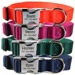 Personalized Engraved Buckle Dog Collars | Personalized Dog Collars | Dog Collars