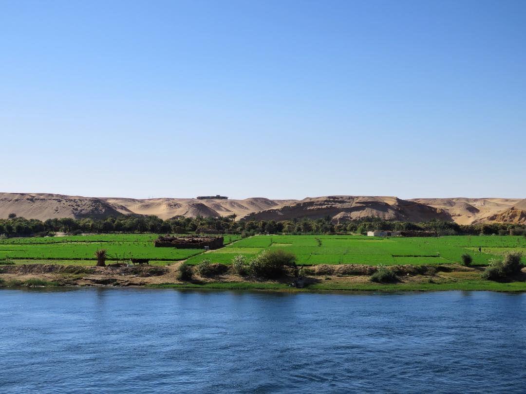 #desierto #desert #nilo #nile #egipto #egypt #egyptgram #egyptgrams #egyptinstagram #instanaturefriends #instanaturelover #instanature #tourism #naturephotography #naturegram #natureart #naturalbeautyshoutouts #nileriver #thisisegypt #natureaddict #naturephotography #naturelover #naturelovers by aly.g