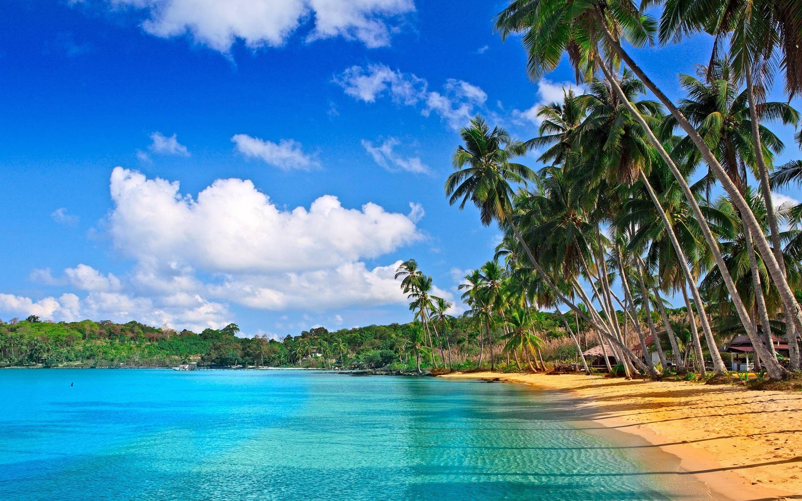Tropical Beach Paradise 4k Ultra Hd Desktop Wallpaper Uploaded By Desktopwalls Beach Wallpaper Beach Pictures Wallpaper Tropical Background