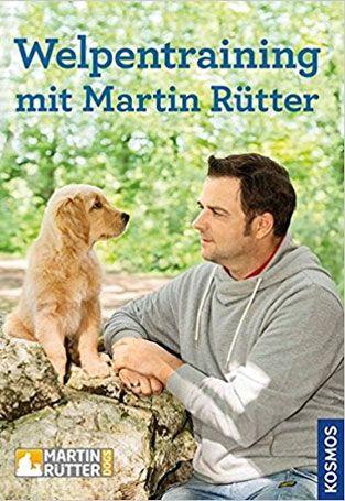 Welpen Stubenrein Bekommen Martin Rütter