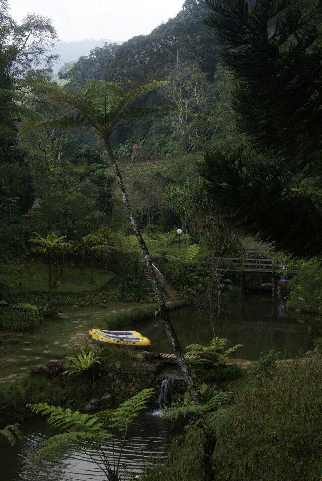Melrimba Garden Di 2020 Fotografi Alam Fotografi Pemandangan Pemandangan
