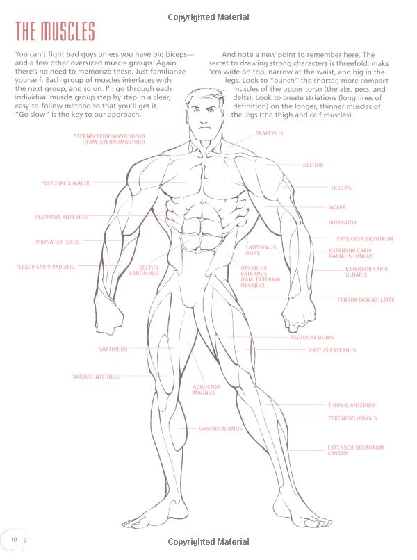 Drawing Cutting Edge Anatomy: The Ultimate Reference for Comic Book ...