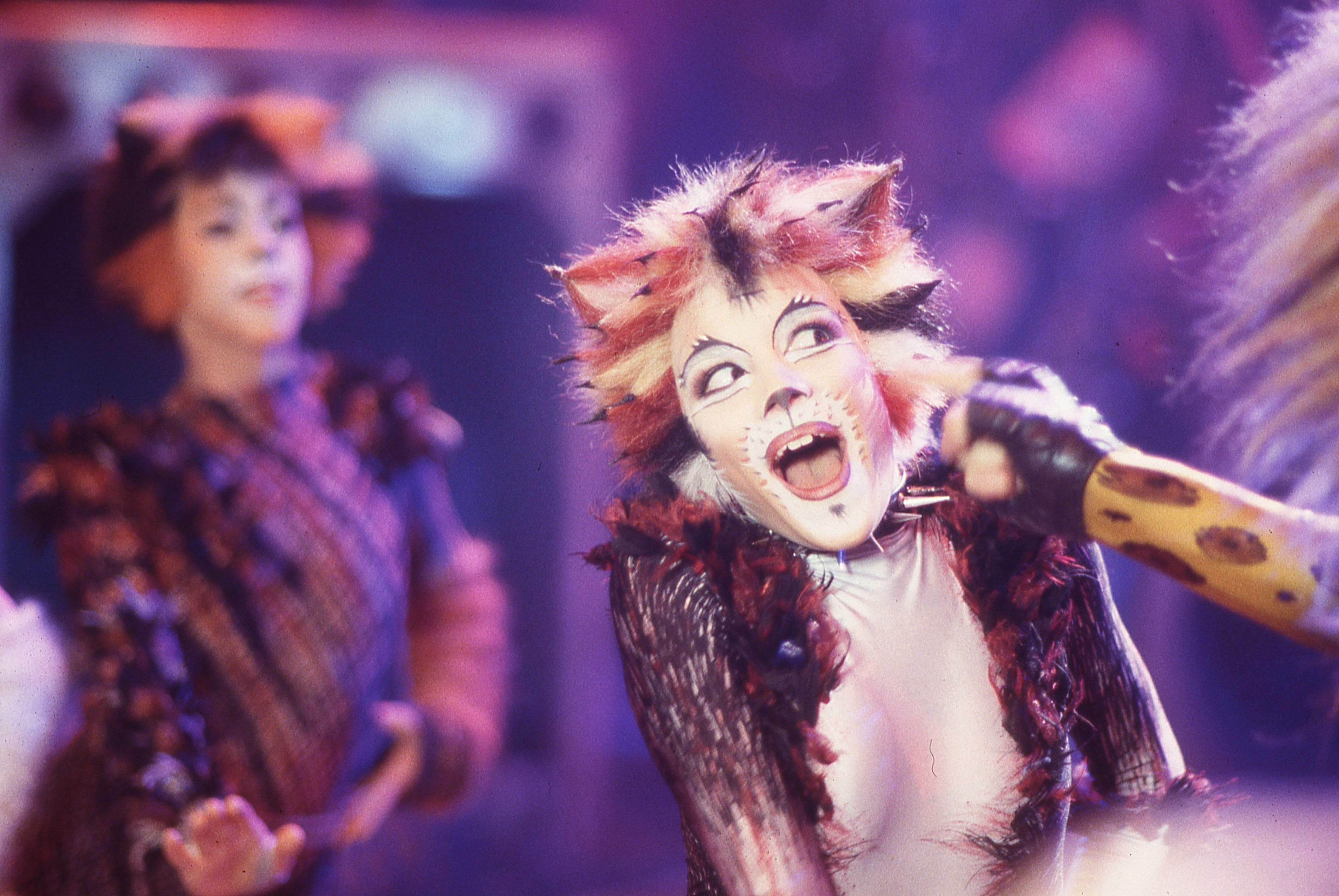 Cats On Screen Cats The Musical Cats Musical Jellicle Cats Cats Cast