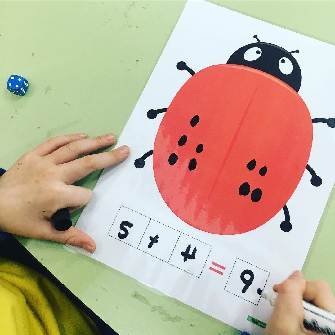 Lady Beetle Adding Activity Teaching Resource