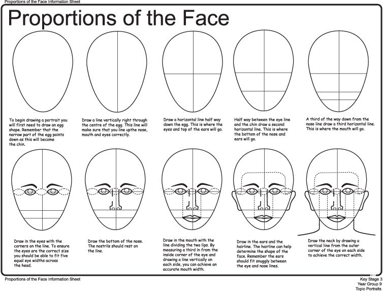 How to draw faces worksheet facial proportions notes