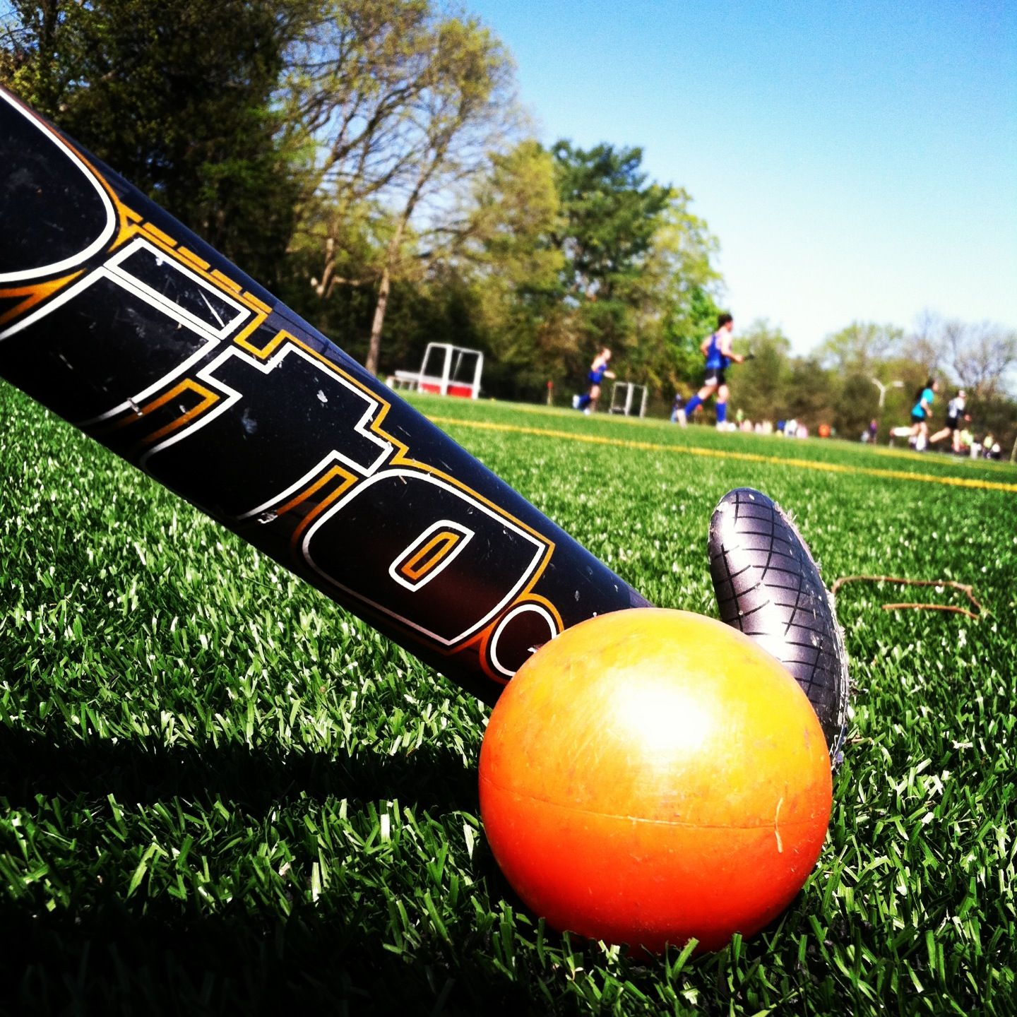 Field Hockey Ball And Stick Hockey Hockey Sobre Cesped Belleza Del Cabello