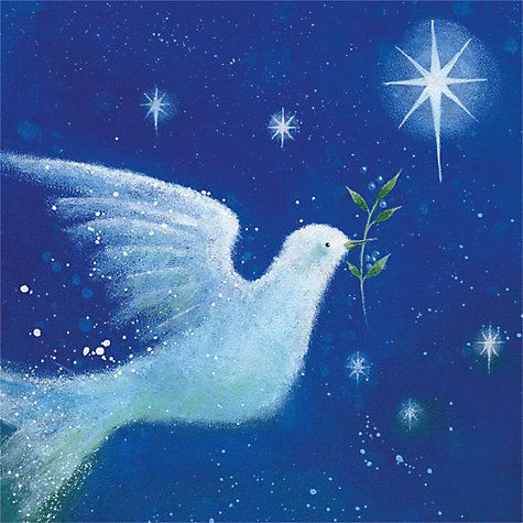 Buy museums galleries dove of peace charity christmas cards pack buy museums galleries dove of peace charity christmas cards pack of 8 online at m4hsunfo