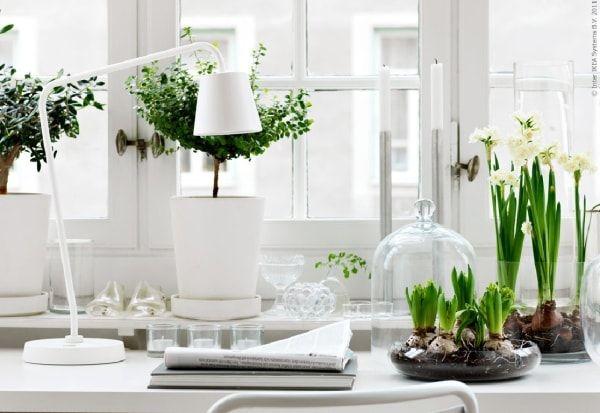 Modern look indoor garden indoor garden and its ideas pinterest modern look indoor garden workwithnaturefo