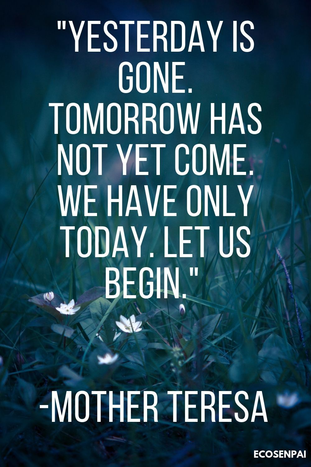Quotes yesterday, today, tomorrow, words of life truths. Quotes