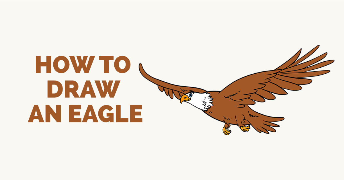How to Draw an Eagle in a Few Easy Steps | Pinterest | Eagle drawing ...