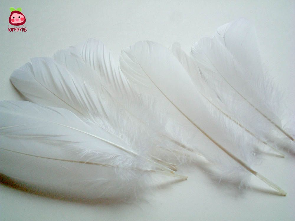 Duck Wing ALL in ONE Natural Feather for DIY Craft