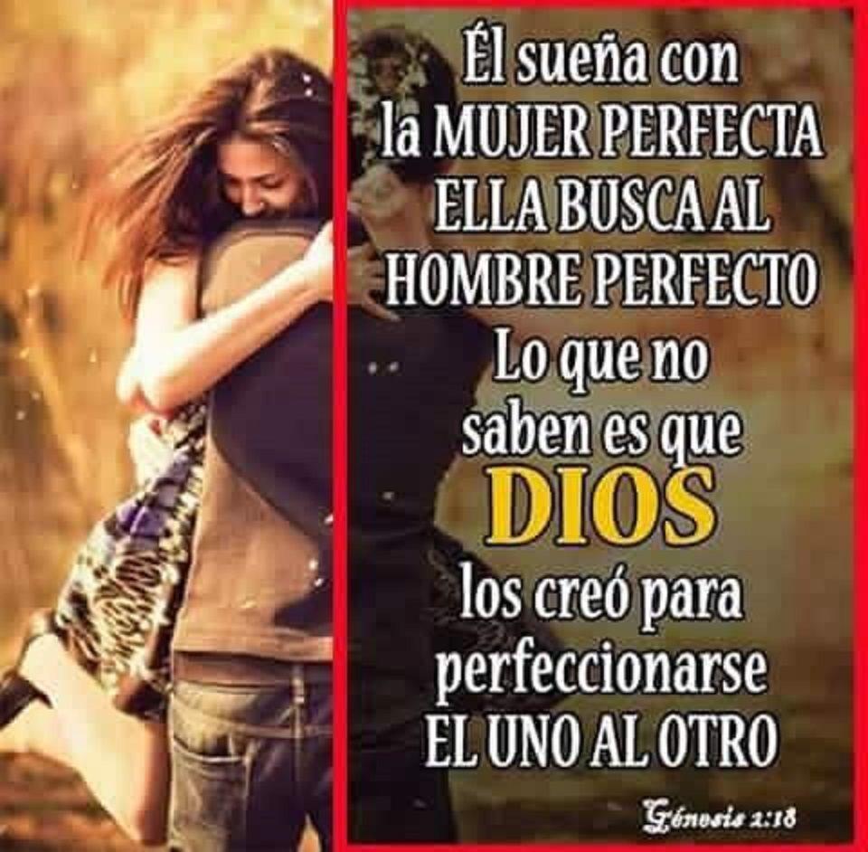 en busca de la mujer perfecta
