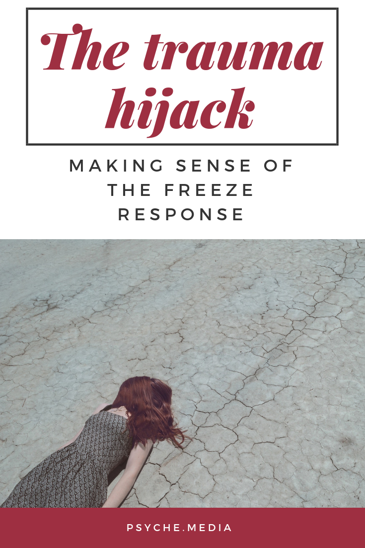Making sense of the freeze response #trauma #amygdala