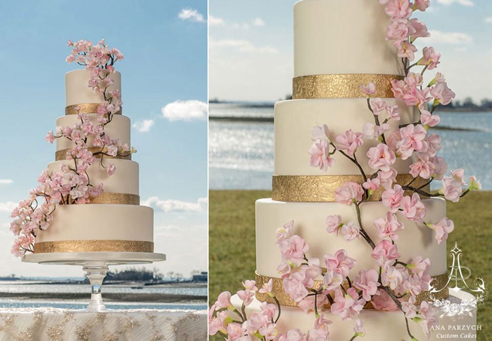 Image from http://www.connecticutweddingcakes.com/images/ct-wedding-cakes-gallery-images/Cherry-blossom-wedding-cake.jpg.
