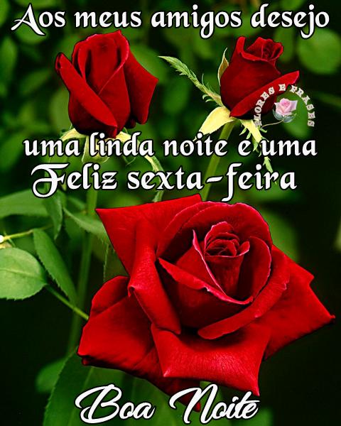Aos Meus Amigos Desejo Uma Linda Noite Flores Frases
